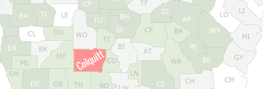 Colquitt County Map