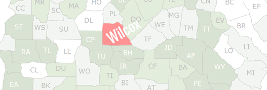 Wilcox County Map